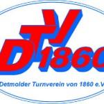 LOGO DTV 300x100