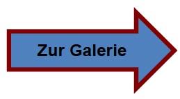 Pfeil Galerie